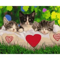 Трио на подушке