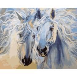 Белоснежная пара лошадей