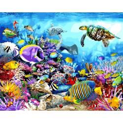 Черепаховый рай