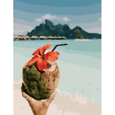Картина по номерам Кокосовые Мальдивы, цветной холст PGX28164, Rainbow Art