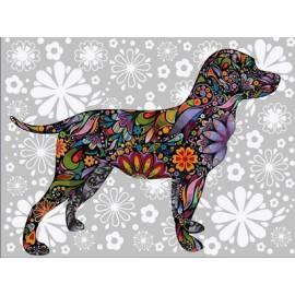 Разноцветная собака
