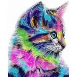 Красочный котик