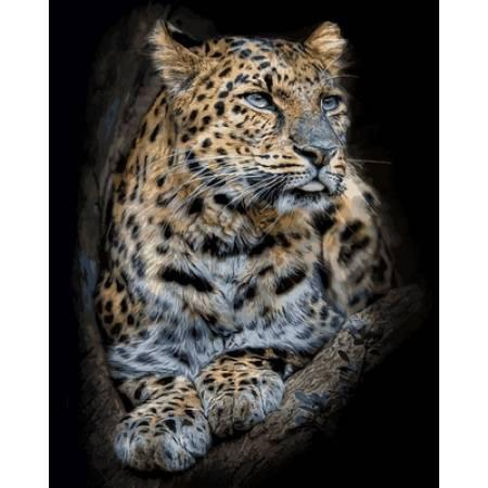 Гордый леопард