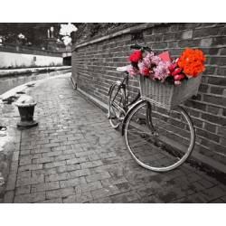Велосипед с цветочной корзиной