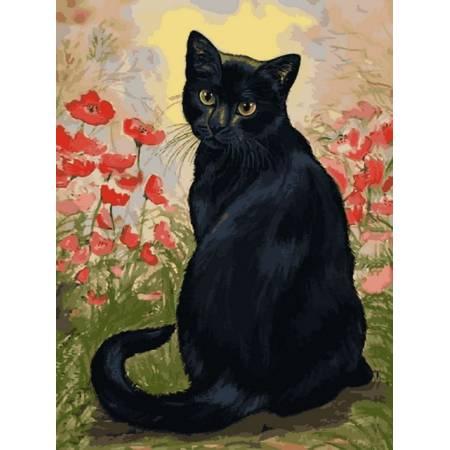 Черная кошка в маках