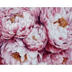 Нежные розовые пионы
