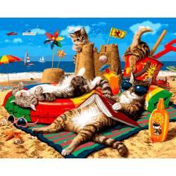 Семья котов на море
