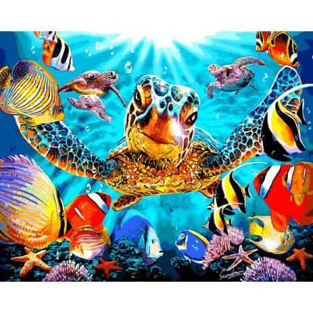 Картина по номерам Черепахи и рыбки VP1323, Babylon